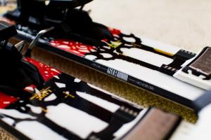 Measurements of LIne Sir Francis Bacon Ski
